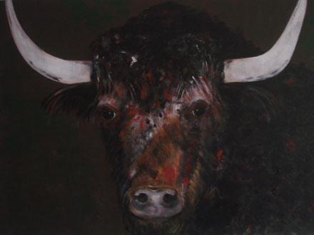 Stoere stier